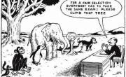 Neenakost v izobraževanju