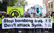 ustavimo vojno