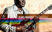 Djelimady Tounkara: Djely Blues