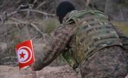 tunizija, vojska, romi