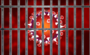 Koronavirus in zapori. Hvala Lana D.