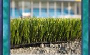 Umetna trava ne pozebe