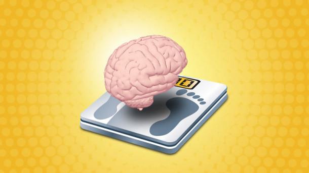 hujšanje v možgane