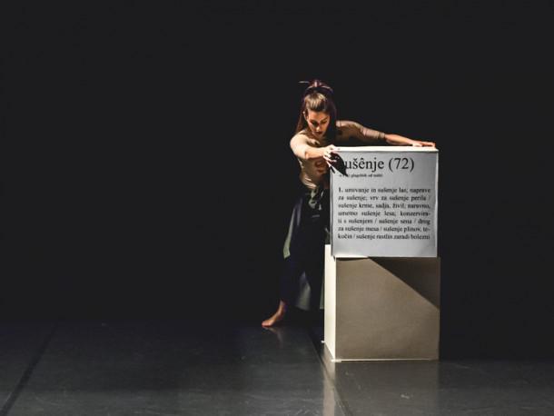 Plesna predstava SSPJ