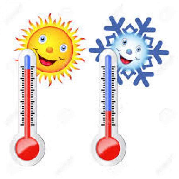 Zaznava temperatur je osnova uspešne termoregulacije.